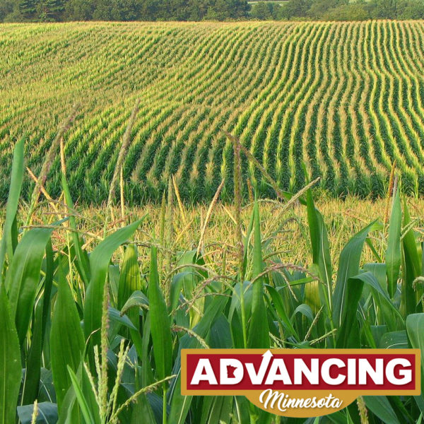 Senate Republicans are Advancing Minnesota's agriculture
