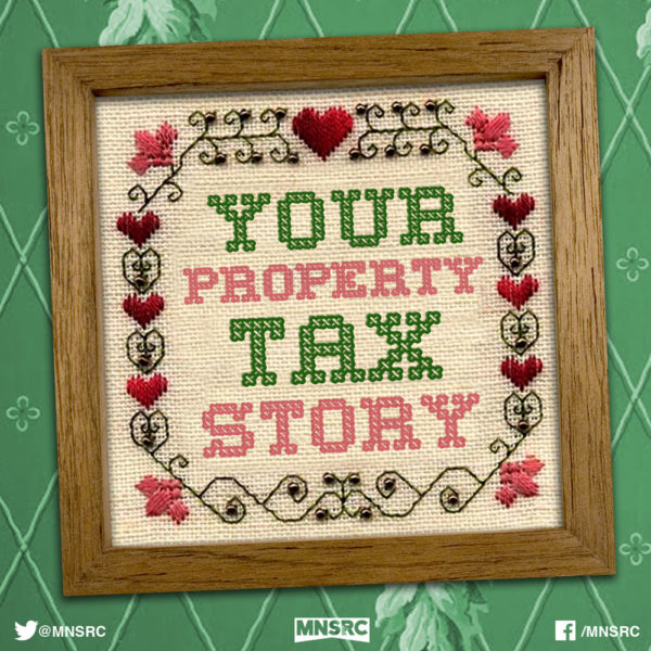 2015 MN Property Taxes