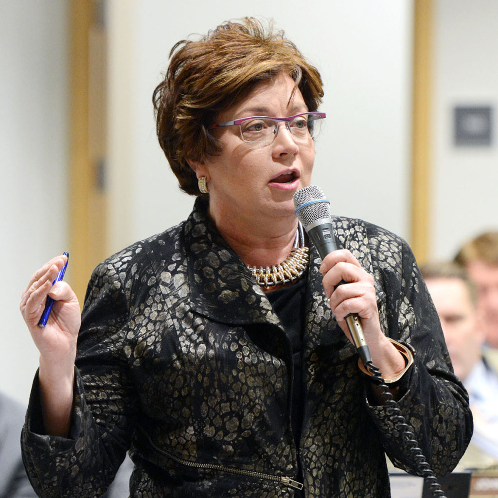 Sen. Carla Nelson Minnesotans can fly worry free
