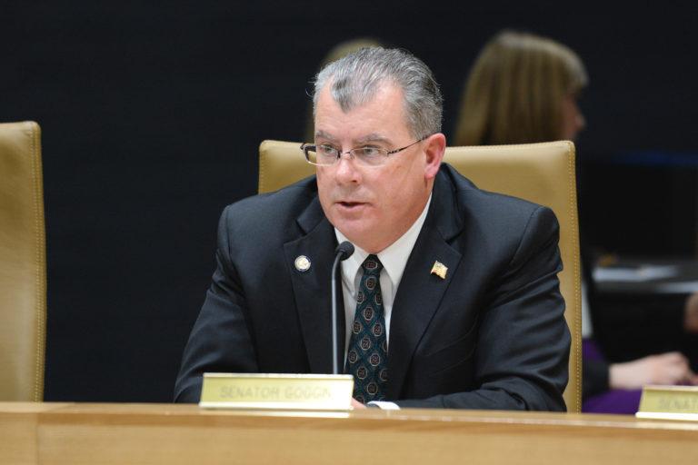 senator mike goggin