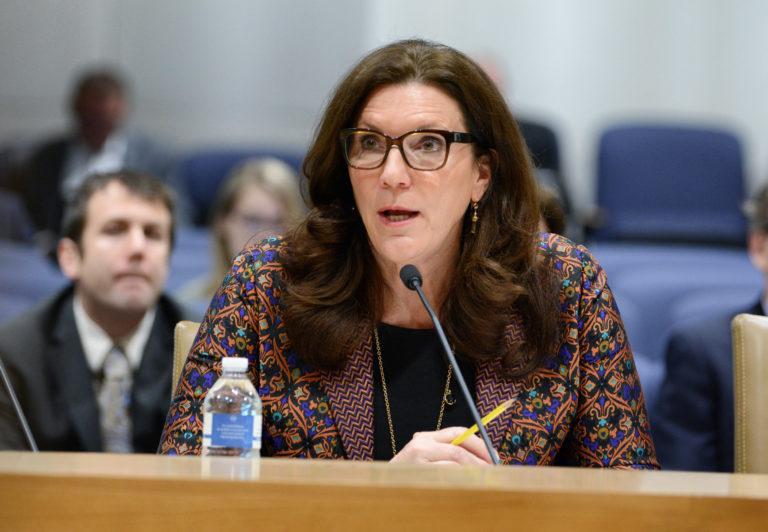 Senator Julie Rosen